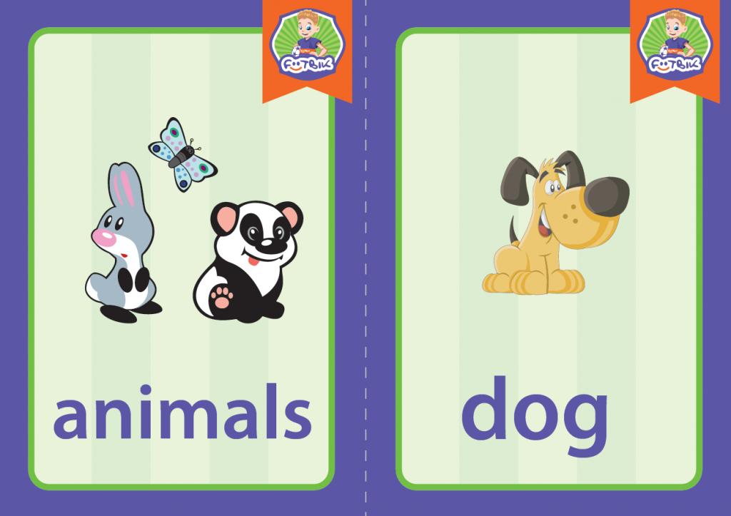 animals_dog