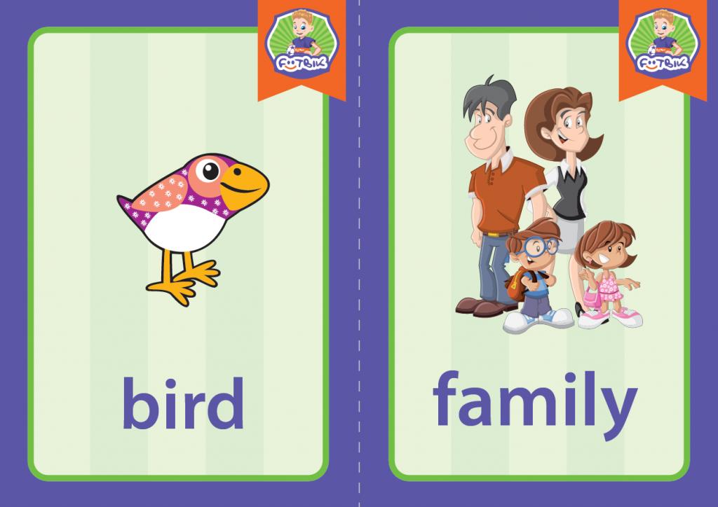 bird_family