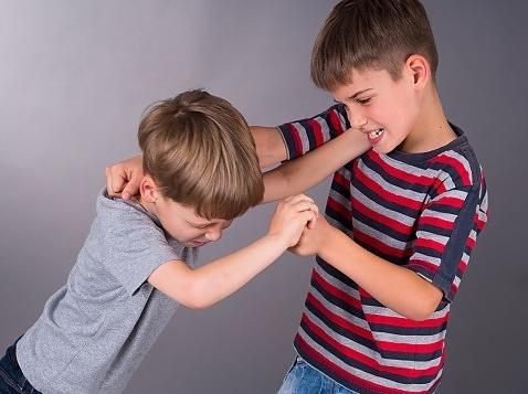 Дети, которые ссорятся